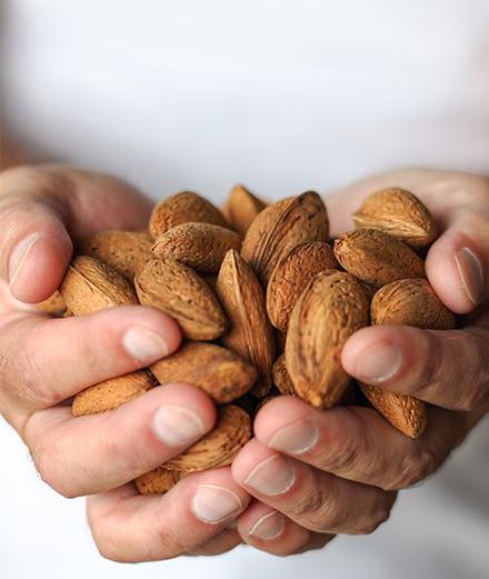 9 loại hạt dinh dưỡng dồi dào cho thực đơn của bạn