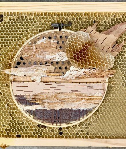 Nghệ thuật thêu, sự kết hợp sáng tạo giữa con người và những chú ong