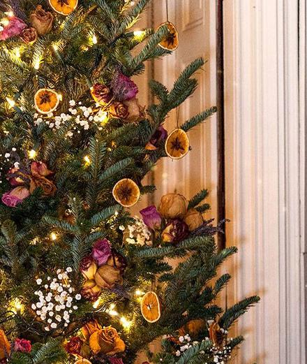 Những ý tưởng trang trí xanh cho Giáng sinh của bạn