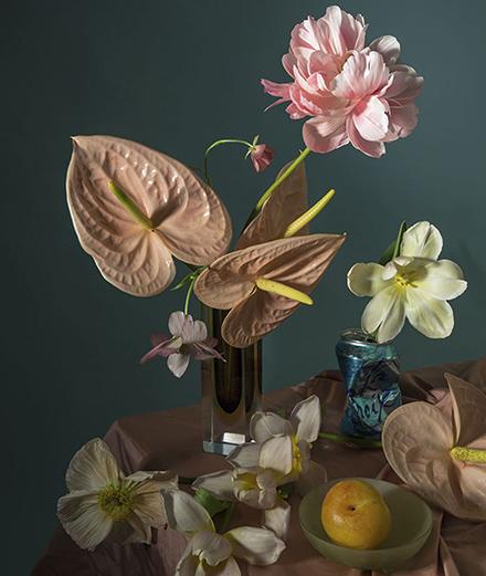 Vẻ đẹp bất diệt của những đoá hoa
