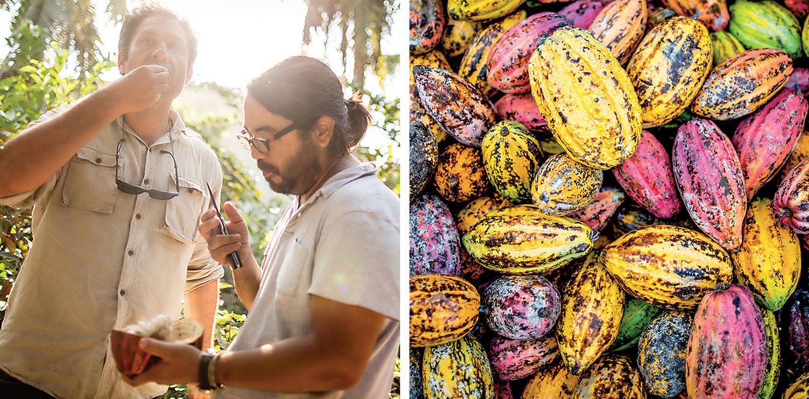 Marou Chocolate: Không chỉ là socola ngon nhất thế giới